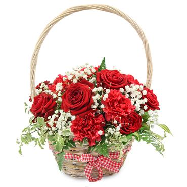 Send Summer Flowers